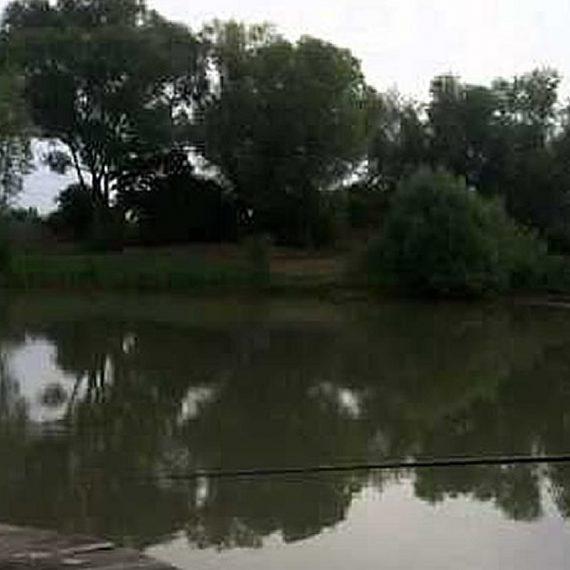 L'étang de La Maxe
