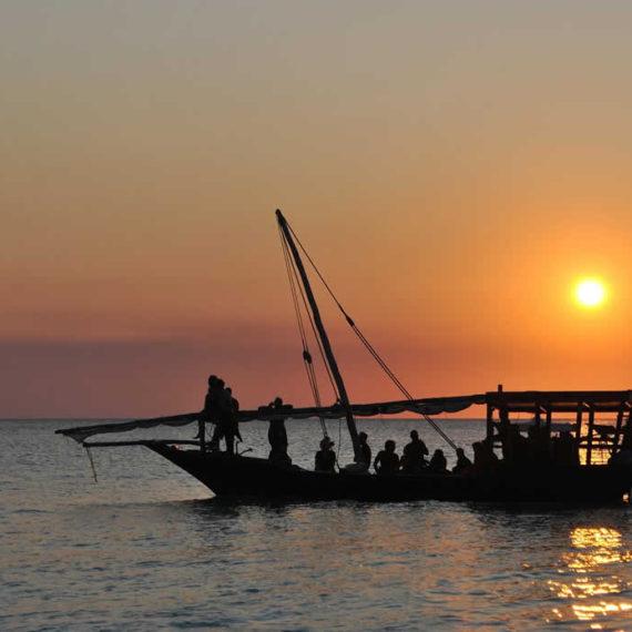 Un voyage dépaysant au cœur de la nature tanzanienne
