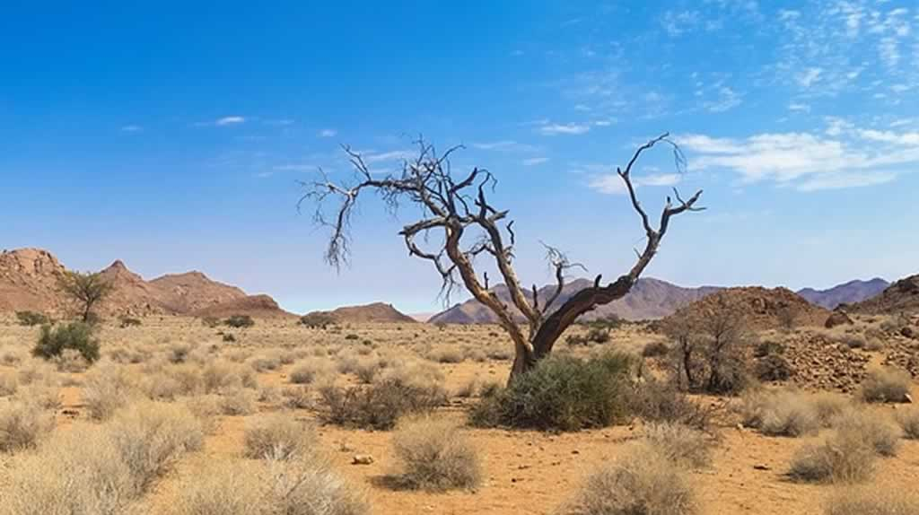 Séjour en Namibie, les incontournables pour les nouveaux touristes